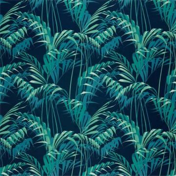 Palm House 226568