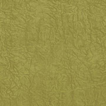 Abelia Chartreuse F1434-02