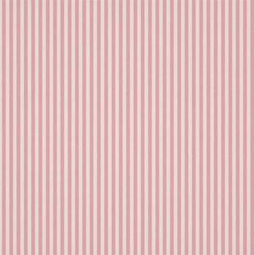 Carnival Stripe HLTF133539