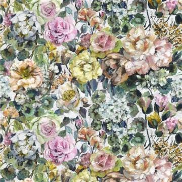 Grandiflora Rose Dusk FDG2957-02