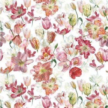 Tulip Garden Azalea FDG2955-01