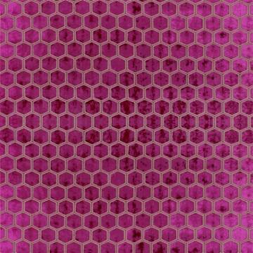 Manipur Fuchsia FDG2832-11