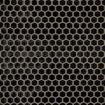 Manipur Noir FDG2832-07