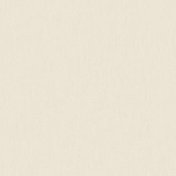 Wunderkammer 347010