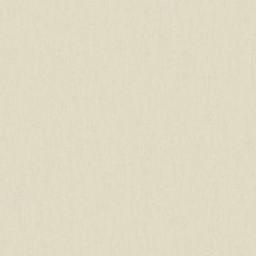 Wunderkammer 347011