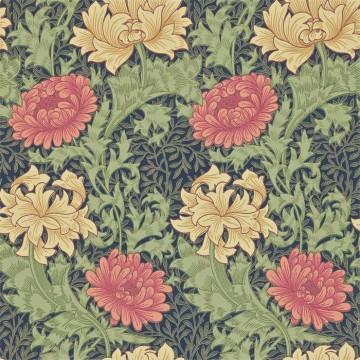 Chrysanthemum DCMW216854