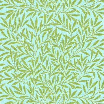 Willow DBPW216964