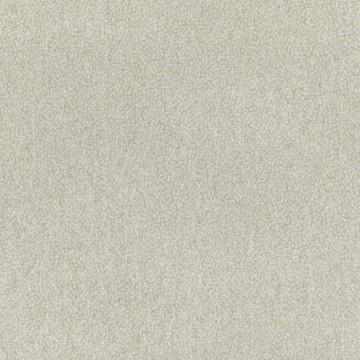 W423-07 Lyra Kelp