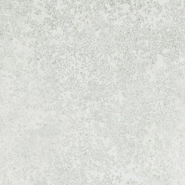 W424-01 Nyiri Egret