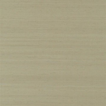 Chinon Birch PDG1119-12