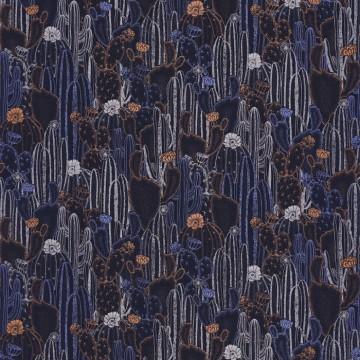 Cactaceae 85925236