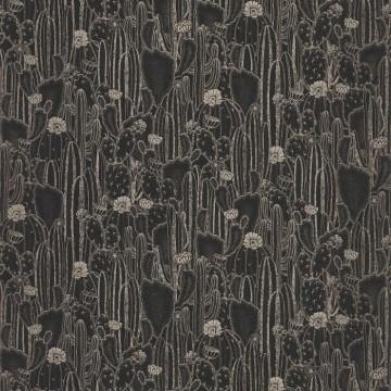 Cactaceae 85929512