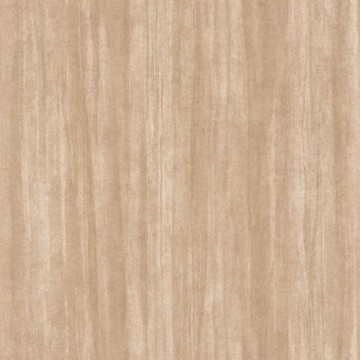 Eucalyptus 85981404