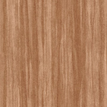 Eucalyptus 85982525