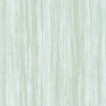 Eucalyptus 85987107