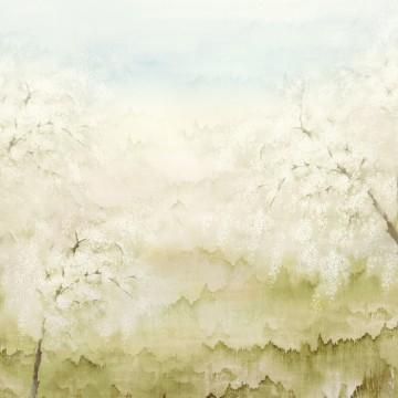 Misaki Spring DG2ISA103