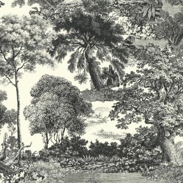 Salcey Forest DG2SAL101