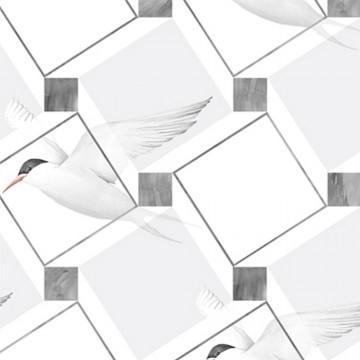 Bird Illusion – Night