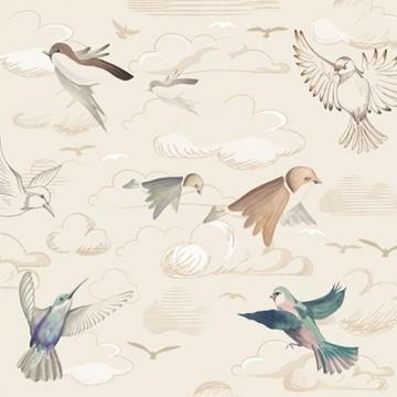 Flying Freedom – Sunset