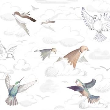 Flying Freedom