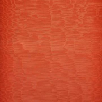 Iris Anguria D20807-028
