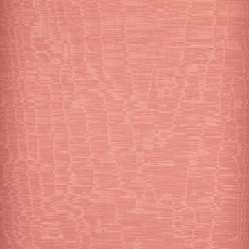 Iris Fenicottero D20807-024
