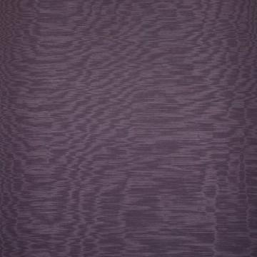 Iris Lavanda D20807-021