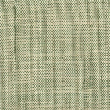 3581 AFRICAN RAFFIA - TWO TONE GREEN