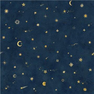 Mural 659-96 Starry Sky Petrol