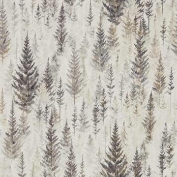 Juniper Pine DYSI216621