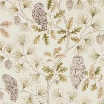 Owlswick DYSI216597