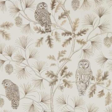 Owlswick DYSI216598