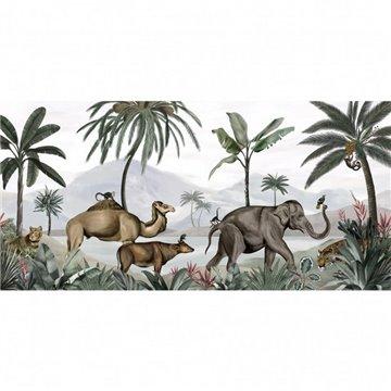 Wild India DOM509
