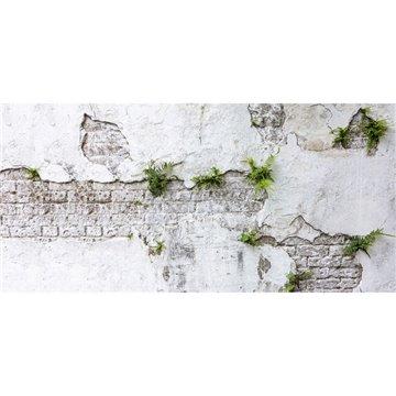 Plants & Brick Wall DOM406