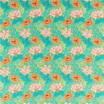 Chrysanthemum 226855
