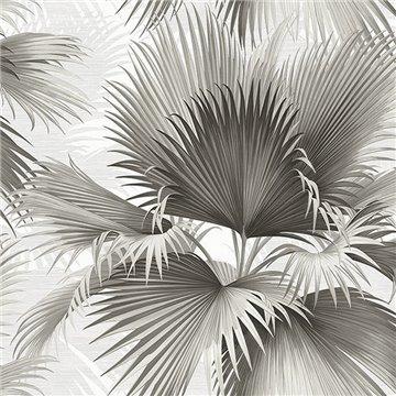 Summer Palm Charcoal Tropical Leaf ECB40100