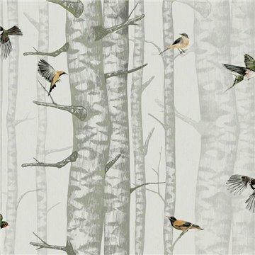 Birch Trees Silvester 9500042