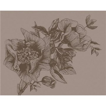 Giant Peonies Cacao 9500703