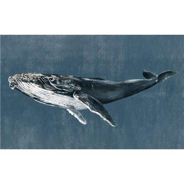 Humpback Whale Vintage 9500101