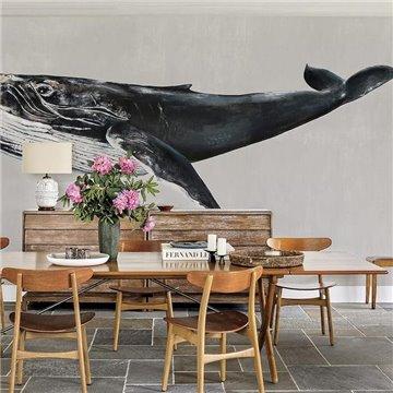 Humpback Whale Grey 9500103