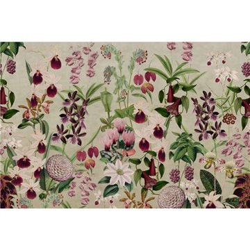 Alice's Garden R17161