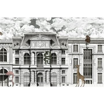 Animal Avenue R17171