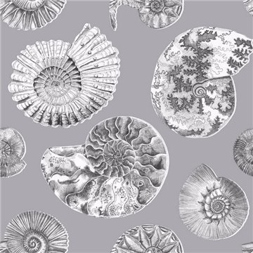 Fossilium Charcoal