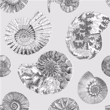 Fossilium Frost
