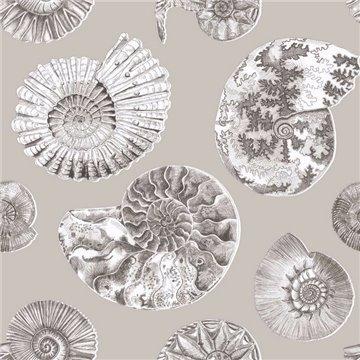 Fossilium Sepia