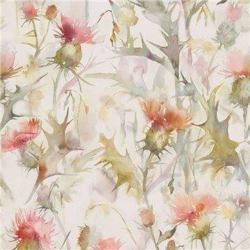Cirsiun Russet