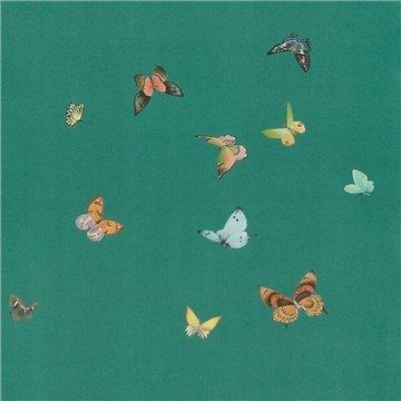 Butterflies Butterflies Emrald on custom green dyed paper