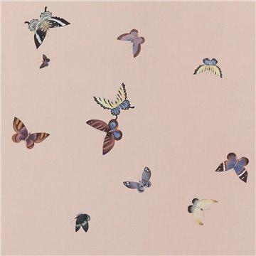 Butterflies Butterflies Icarus on Gentleman´s Pink dyed silk
