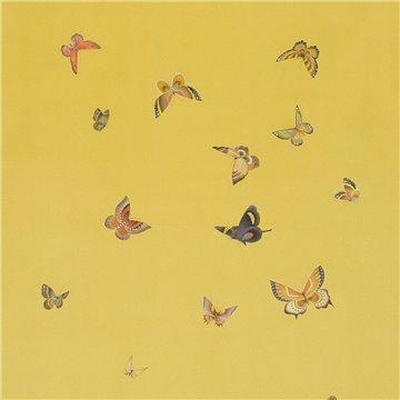 Butterflies Butterflies Monarch on dyed paper