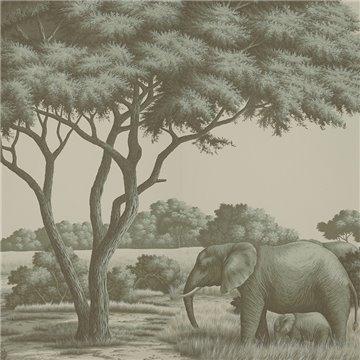 African Savannah Crystal Grey on Scenic paper